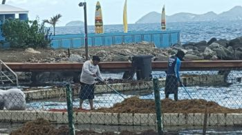 Workers during the clean up at Dolphin Discovery. Photo: VINO