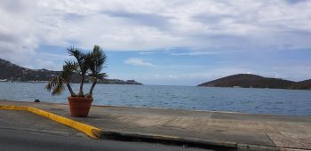 The US Virgin Islands (USVI) will not be restricting the capacity of ferries operating between it and the Virgin Islands (VI). Photo: VINO/File
