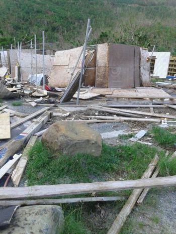 The stables at Ellis Thomas Downs in Sea Cows Bay were also damaged by Hurricane Irma. Photo: VINO