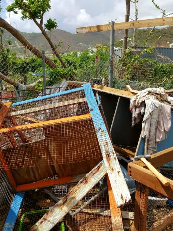 Damages suffered by the BVI Humane Society as a result of hurricanes Irma and Maria. Photo: VINO