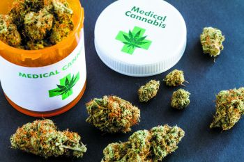 A Licensing Authority Board for medical marijuana would comprise persons from the legal fraternity, medicine, law enforcement and business, according to Government. Photo: Internet Source