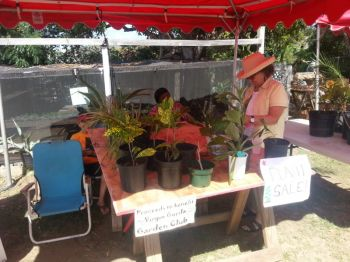 Some of the displays at the Virgin Gorda launch of agriculture week activities yesterday, February 13, 2014. Photo: VINO.