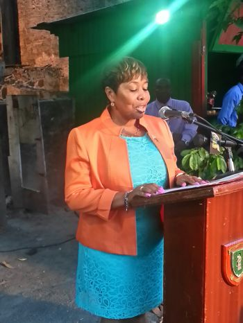 Director of Tourism Sharon Flax speaks at the launching. Photo: VINO