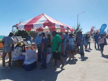 Hundreds of persons have made the trip to Anegada for the 5th Annual Anegada Lobster Festival. Photo: VINO