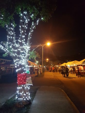 The Christmas lights on deCastro Street were a welcoming sight to many. Photo: VINO