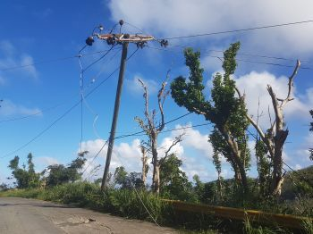 Cables belonging to either Flow or BVI Cable TV on a utility pole in the Windy Hill area of Tortola. Photo: VINO