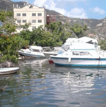 Many abandoned boats at the Virgin Islands (VI) marinas. Photo: Team of Reporters