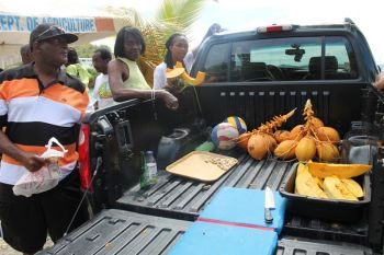 Coconuts, pumpkin and breadfruit were among the popular products at the Farmers' Week Exhibition in JVD. Photo: VINO