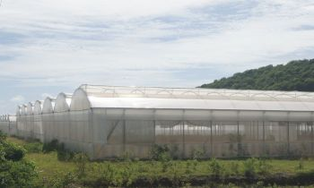 People's Empowerment Party (PEP) leader Hon J. Alvin Christopher (R2) doesn't think the Greenhouses at Paraquita Bay can meet the agricultural demands of the territory. Photo: VINO/File