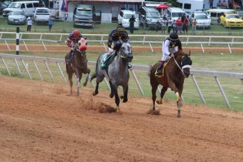 Horse races at Ellis Thomas Downs. Photo: VINO/File