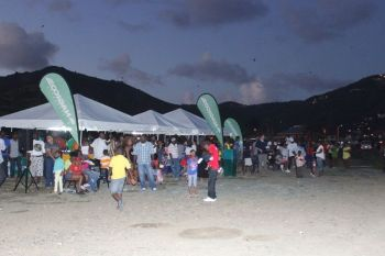 The Kite Flying Competition and Family Fun Day, organised by The Association of Guyanese in the BVI, will be held on Monday April 22, 2019 from 12:00pm behind Central Administration Complex, Wickham's Cay 1. Photo: VINO/File