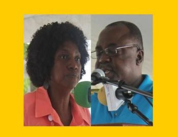 In February 2015, farmers called for the removal of Chief Agricultural Officer (CAO) Mr Bevin Brathwaite and Deputy Chief Agricultural Officer Mrs Arona Fahie-Forbes from their offices as they are allegedly 'sour grapes' sitting at the head. Photo: VINO/File