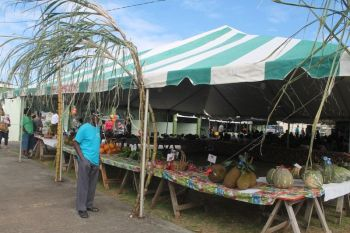 "The 2015 Farmers Week Exhibition was poorly supported by farmers as according to sources, farmers were not pleased with the way they were being ""handled"" by officials of the Department of Agriculture. This year 2016, however, there will be no exhibition. Photo: VINO/File"