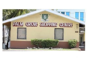 BEFORE: The Palm Grove Shopping Centre was one of the earlier buildings on Wickhams Cay I, built as a mall. Photo: File/ Dean H. Greenaway aka 'The Sportsman'