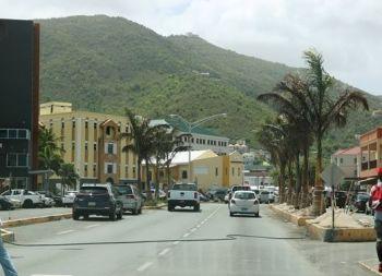 The palm trees were planted along Waterfront Drive, Administration Drive and the Market Square. Photo: GIS/File