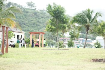 More than 50 local contractors reportedly had a hand in the construction of the QE II Park. Photo: VINO