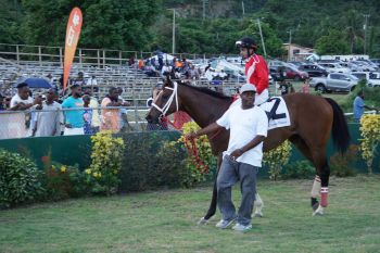 In the penultimate race of the day, a one-mile showdown for Class B Horses, Chovanes of The Boys Racing Stables on Tortola, blazed to victory in 145.1. The winning Jockey was Christian Santiago. Photo: Andre S. Dawson aka 'Shadow'