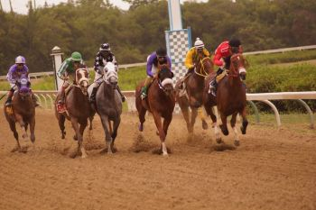 Some 12 horses from Tortola competed in the 2016 Carnival Races. Photo: Andre 'Shadow' Dawson/VINO