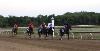 12 VI horses in total will be featuring in the 8-race card at Clinton E Phipps racetrack in St Thomas, USVI on April 29, 2016. Photo: VINO/File
