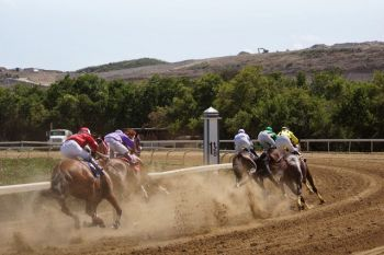 Scene from the races at the Clinton E. Phipps racetrack yesterday, March 23, 2014. Photo: Andre 'Shadow' Dawson