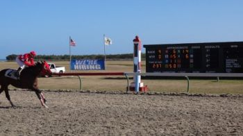 Broken Home wins sprint classic ad is seen here close to the finish line. Photo:VINO Team of reporters