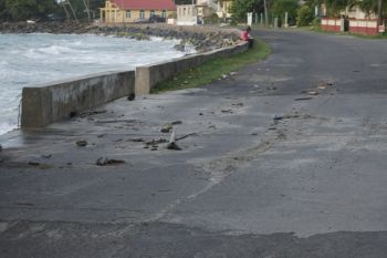 Debris on the Carrot Bay roadway. Photo: VINO