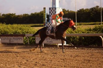American Greed of top Priority Stables took second in the final race of the day. Photo: Andre 'Shadow' Dawson/VINO