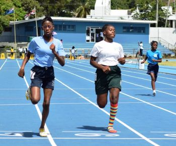 Action in the Inter Primary School Track and Field Championships, which concluded on Friday March 11, 2016. Photo: Charlie E. Jackson/VINO