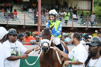 My Pal Shawn in the winner's circle following the tragic run of the feature race in which Doughmaker suffered two broken legs and had to be put down at Ellis Thomas Downs. Photo: VINO
