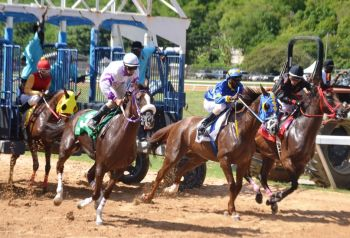 Wheatley said that horse racing could become an important economic pillar here. Photo: VINO/File