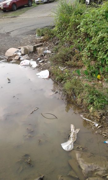 Residents feel the Government/Water and Sewage Department has been insensitive to their needs. Photo: VINO