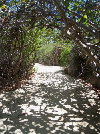 The trail to The Baths on Virgin Gorda has been severely damaged by the two recent hurricanes. Photo: Pinterest