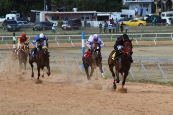 Horses from the VI and USVI are set for a showdown come Sunday May 31, 2015 at Ellis Thomas Downs as the latter are seeking to reclaim the glory stolen by Tortola last time out in St Thomas. Photo: VINO/File