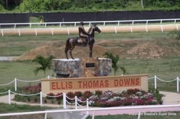 The Virgin Islands' famous Ellis Thomas Downs has no Pari-Mutuel wagering, which continue to result in the struggle of the Horse Owner's Association to have frequent races and pay purses. Currently, the sport is on the decline with no horses and no money to maintain the sports or the facility which is very popular amongst indigenous Virgin Islanders. If Pari-Mutuel betting is introduced via legislation, it could pour millions of needed dollars into the sports and the Government coffers like it does in most developed countries around the world. Photo: VINO/File