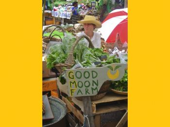 'Good Moon Farm' presenting and selling its organic produce at a local farmers market. Photo: Provided