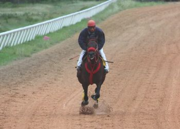 Exercise rider, David A. Campbell aka Jamtown explained that there is more to a jockey than it appears from the outside. Photo: VINO/File
