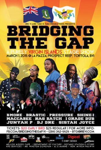 The flyer for Bridging the Gap. Photo: Provided