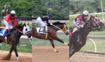From left to right: Apollo Sky, Really Up Town and Swag Daddy. Photo: VINO/File