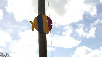 A fish decked out in yellow, blue and red on a utility pole in the Pockwood Pond area. Photo: Team of Reporters