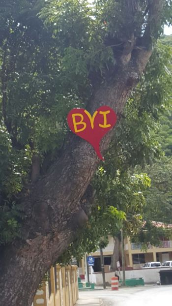 A red heart signage with BVI placed in the middle displayed on a tree near to the Ebenezer Thomas Primary School in Sea Cows Bay. Photo: Team of Reporters