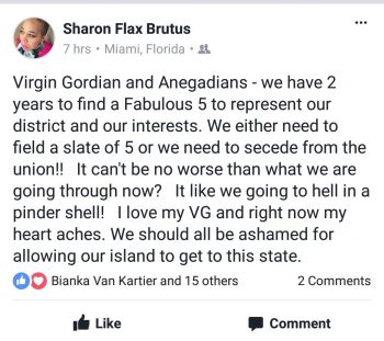 The Facebook post by Sharon Flax-Brutus calling for new leadership for Virgin Gorda. Photo: Facebook