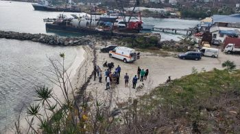 A man was pulled from the water near CSY dock in Baughers Bay in an unresponsive state today, May 22, 2019. Photo: Team of Reporters