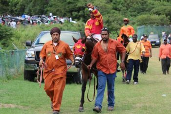 Owner of Slevin, Mr James Bates (right, with blue jeans), has related to Virgin Islands News Online that his horse received an injury to a hoof on one of his front legs while he was in a stable at Ellis Thomas Downs at Sea Cows Bay for the Boxing Day races last December. Photo: VINO/File