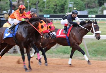 Really Uptown, with jockey Alberto Soto Morales, dashed out in front from the get go and led throughout to finish well ahead of Slevin (centre). Good Prospecting was third by as much as two lengths behind. Photo: VINO