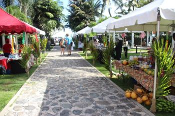 Many tourists passed through the various venues and we're able to get a 'Taste of Tortola'. Photo: VINO