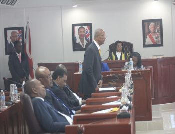 Premier and Minister of Finance Dr The Honourable D. Orlando Smith (AL) has been finding it difficult to get all his team members to support the Bill entitled: Virgin Islands Recovery and Development Agency Act 2018. Photo: VINO/File