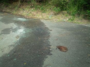 The dangerous roadway from where Rhymer's vehicle toppled. Photo: VINO