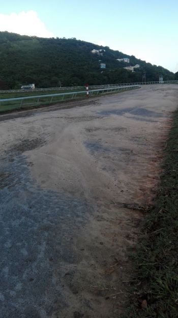 The track surface of Ellis Thomas Downs in Sea Cows Bay. Photo: VINO