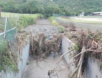 The ghut which became blocked and caused the water to divert to the track at Ellis Thomas Downs. Photo: VINO