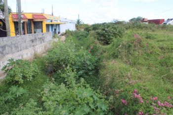 Mr Michael 'Marlo' Chinnery told Virgin Islands News Online that his grandfather, Mr Steadman Penn, had even given Government a piece of the land they are now looking to acquire for the construction of a ghut but now Government is back for more. Photo: VINO